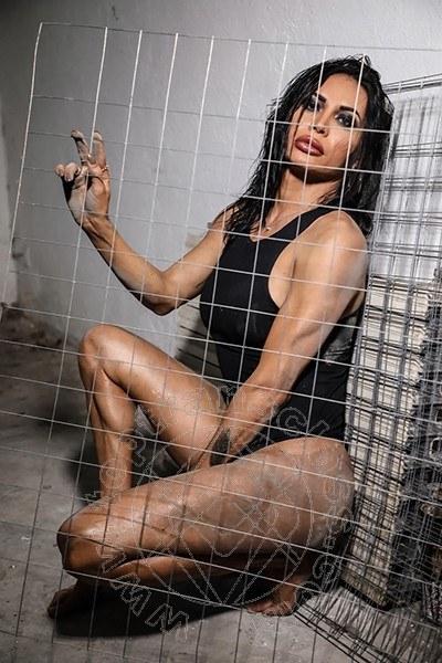 Raphaela Barcelos  trans TREVISO 3388857684