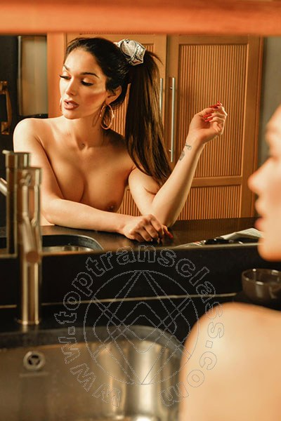 Real Angel  trans ALBA ADRIATICA 3291924529