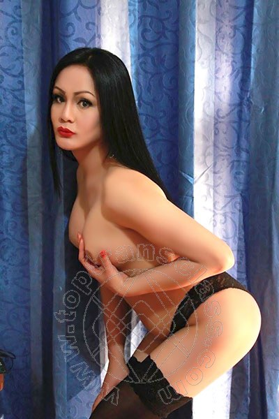 Angelika Asiatica  trans CREMONA 3245611031